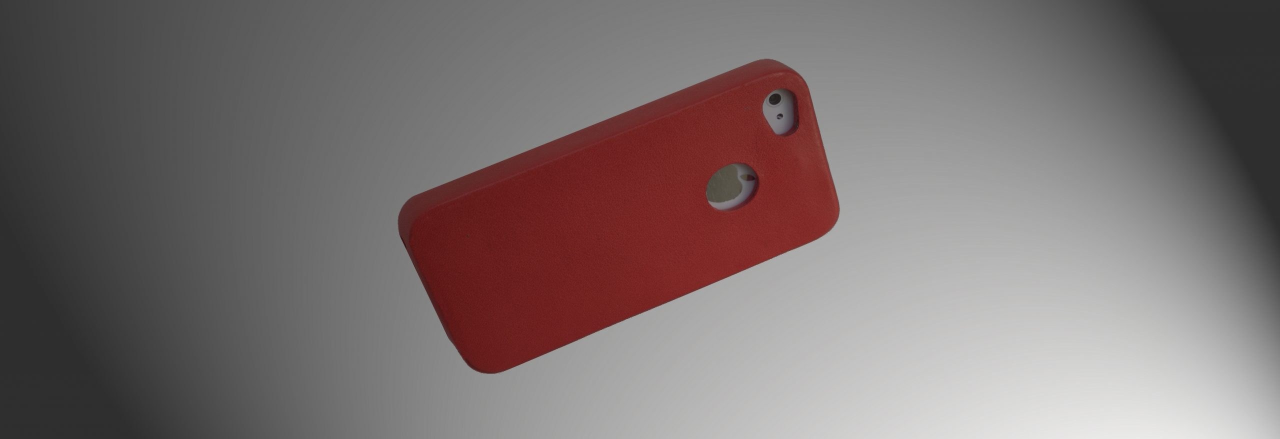 Born the case for the new iPhone 5